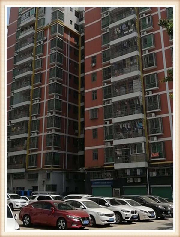 坂田村委统建楼|送精装修|总价68.8万起|返租1年|坂田片区唯一大型花园小区房