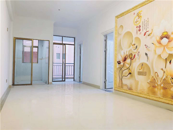 大岭山龙江小产权房 盛世豪庭 精装两房只需21.8万