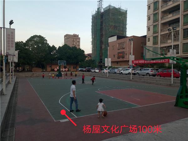 大岭山杨屋小产权房(文苑华府)4栋规模小区3280元,分期3~5年,利息低至4厘