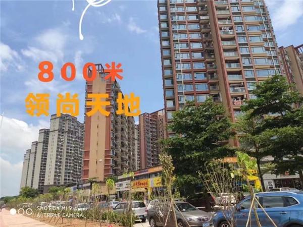 大岭山最新楼盘马路第一排(九龍苑)起价4800,户户发绿本,永久产权