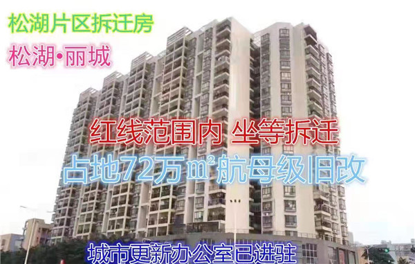 大岭山龙江最便宜小产权房拆迁房(松湖丽城)4960元两栋,首付5成,无条件分期3年