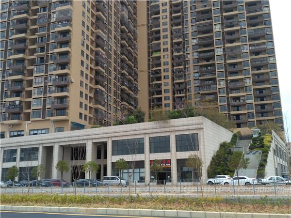 2021光明新区带花园停车场(大围新城花园)统建楼直接村委签合同