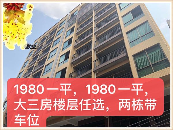 东莞企石凤凰岗小产权房|凤凰雅苑|1980一平方|9层AB两栋