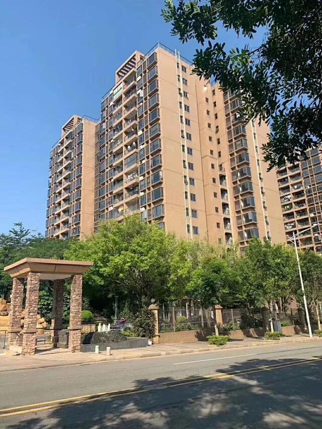 松山湖心区五栋大社区大红本住宅洋房|起价1.3万/|首付3成|银行分期8年|利4.4豪装交房