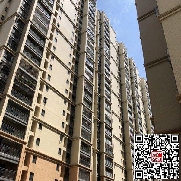 光明正规统建楼栋1200户,两梯四户,28层,带天然气