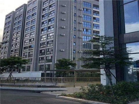 凤岗5栋大型小区花园式小产权房【雁田花园】均价12800带装修出售