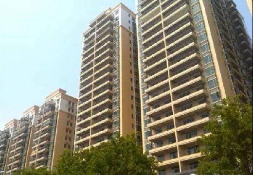 深圳宝安福永 10栋村委统建楼,  鸿盛国际低价热卖
